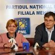 Doiniţa Mariana Chircu este candidatul PNL Mehedinţi pentru funcţia de primar al municipiului Orşova. Raportat la intenţia sa de a câştiga acest fotoliu de primar, opţiunea politicã a doamnei Doiniţa...