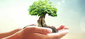 SC ADI PROD COM SERV SRL titular al proiectului «Extindere şi recompartimentare spaţiu comercial şi schimbare de destinaţie a imobilului în pensiune turistică» anunţă publicul interesat asupra luarii deciziei etapei...