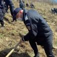 Jandarmii mehedinţeni, alãturi de reprezentanţii Ocolului Silvic Drobeta Turnu Severin au participat, în data de 25 martie a.c., la o actiune de împãdurire. Aceasta s-a desfãşurat în zona Topolova,...