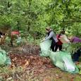 Se împlinesc aproape douã luni de când a început cea mai amplã acţiune de ecologizare în Geoparcul PLATOUL MEHEDINŢI. Pe 4 aprilie 2021, MARATONUL ECOLOGIZÃRII demara în comuna Ponoarele,...